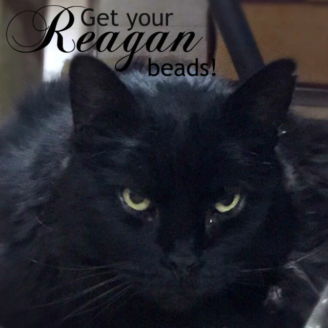 Get your Reagan black cat beads. Genuine czech glass beads.